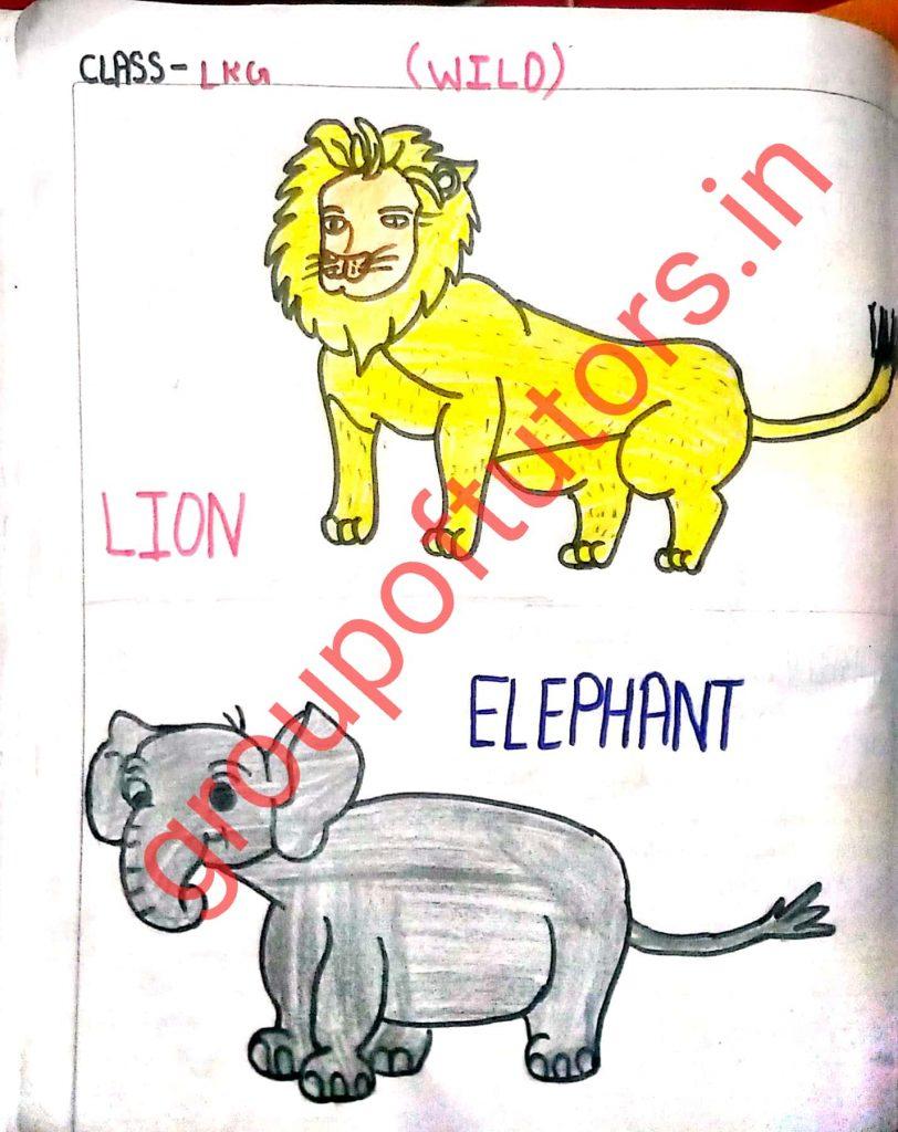 Wild Animals lesson plan LKG
