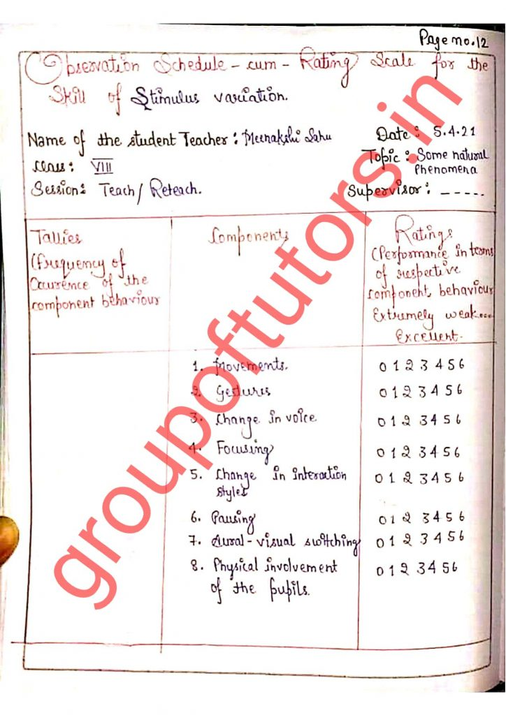 Group of tutors lesson plan rating scale