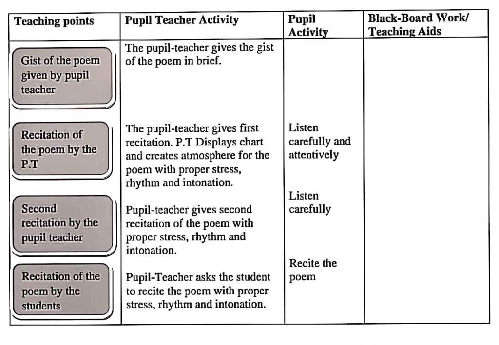 Pedagogy of English Lesson Plan