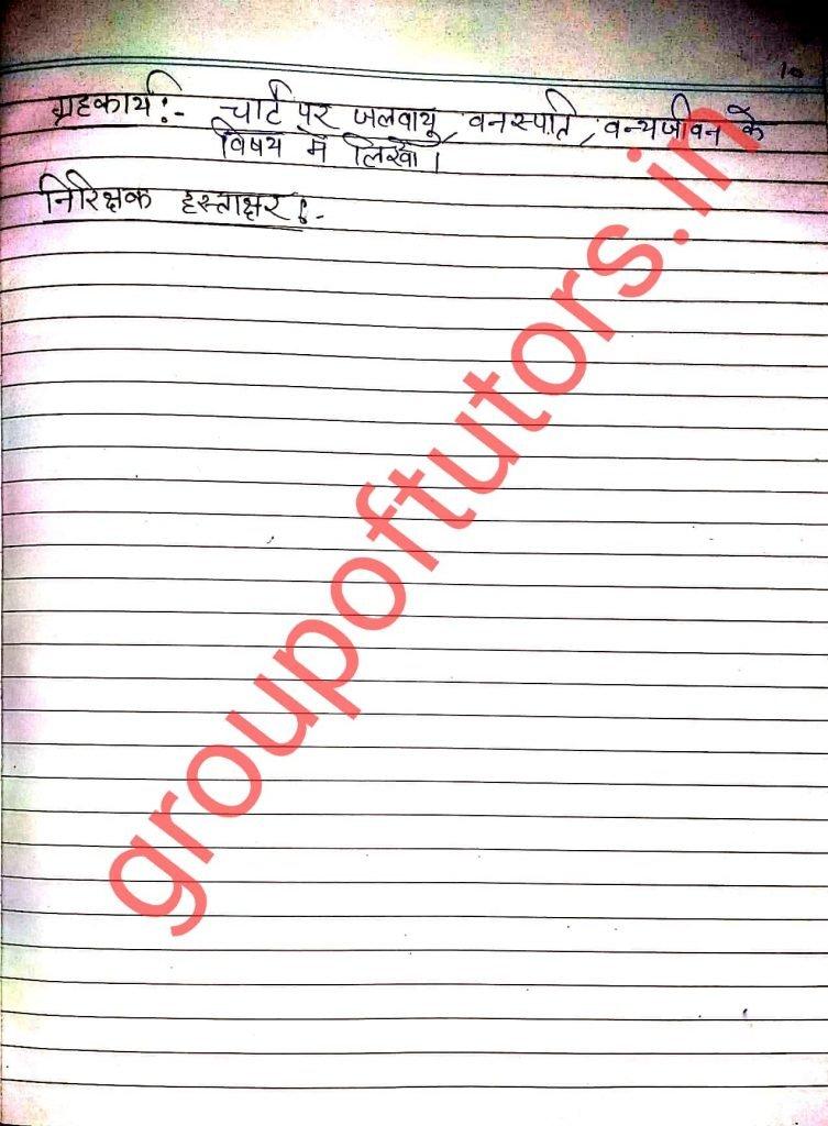 Group of tutor plan