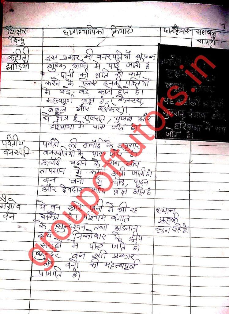 Social science lesson plan hindi