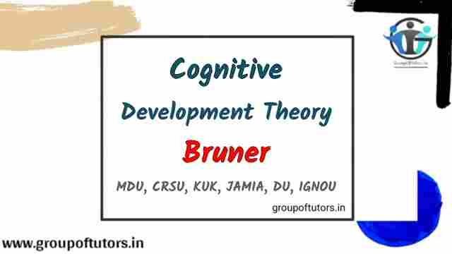 Bruners Theory Assignment Notes Group Of Tutors